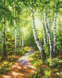 Картина по номерам 24х30см, Березовый лес Schipper 9240801